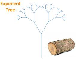 log exponent tree